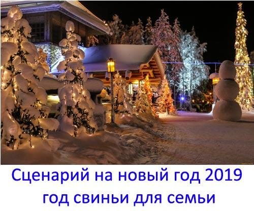 День семьи – сценарий праздника, Новый год - 2019